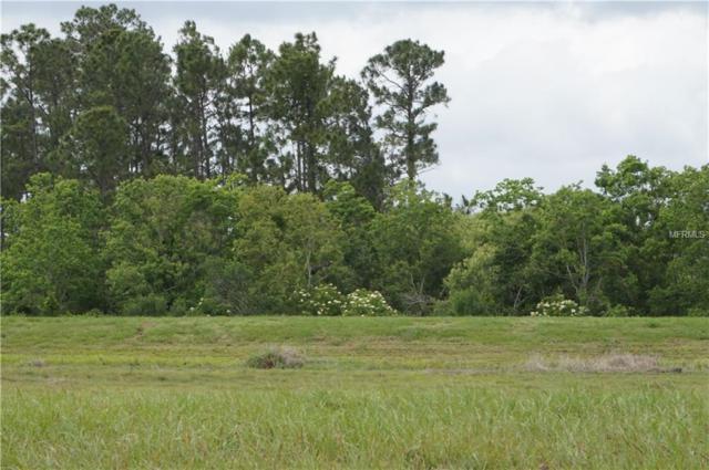 Top View Drive, Leesburg, FL 34788 (MLS #O5704980) :: The Duncan Duo Team