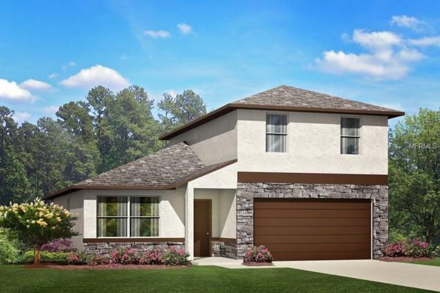 13127 Devonshire Road, Orlando, FL 32832 (MLS #O5706636) :: The Duncan Duo Team