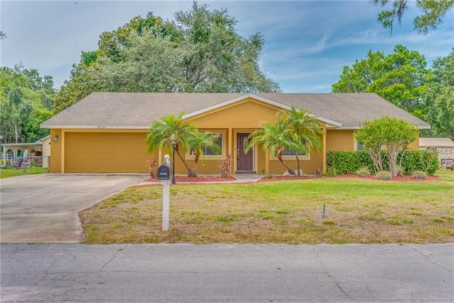 32025 Bluegill Drive, Tavares, FL 32778 (MLS #O5706924) :: Griffin Group