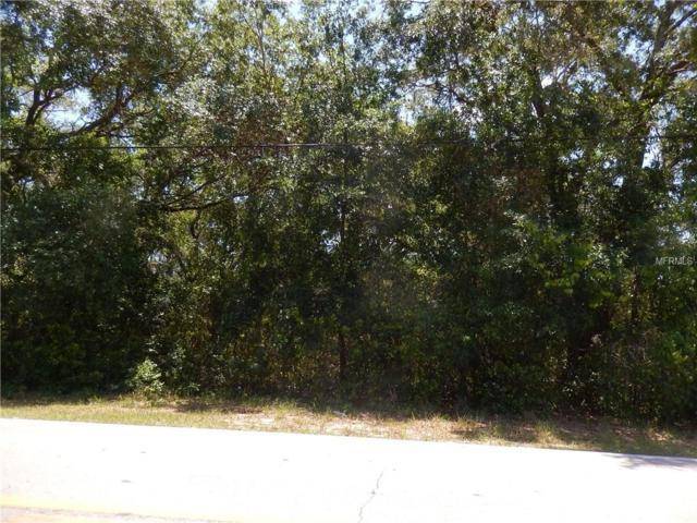 401 North Boulevard, Davenport, FL 33837 (MLS #O5707099) :: The Duncan Duo Team