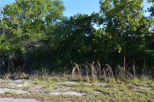 Malauca Pass Trace, Weirsdale, FL 32195 (MLS #O5707138) :: Mark and Joni Coulter | Better Homes and Gardens