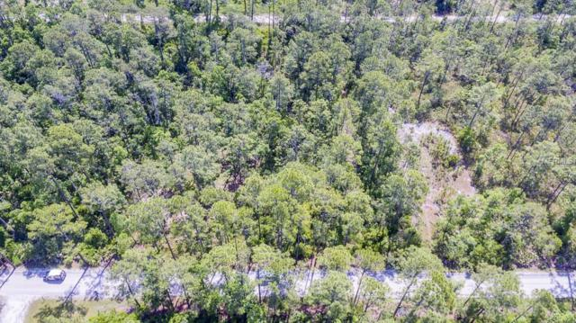 East Parkway, Deland, FL 32724 (MLS #O5707480) :: Griffin Group