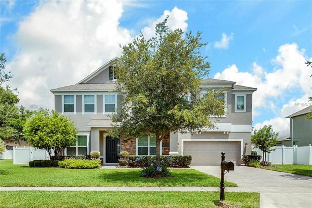 2149 Parkside Meadow Drive, Apopka, FL 32712 (MLS #O5707690) :: GO Realty