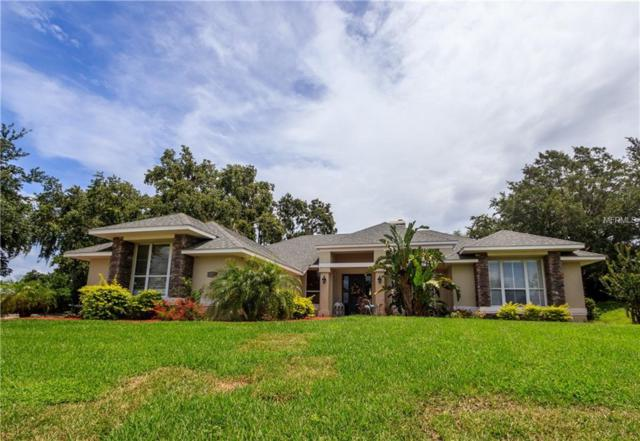 11908 Falcon Crest, Clermont, FL 34711 (MLS #O5708996) :: The Duncan Duo Team