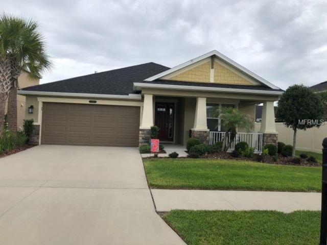 21529 Casina Place, Land O Lakes, FL 34637 (MLS #O5709084) :: Arruda Family Real Estate Team