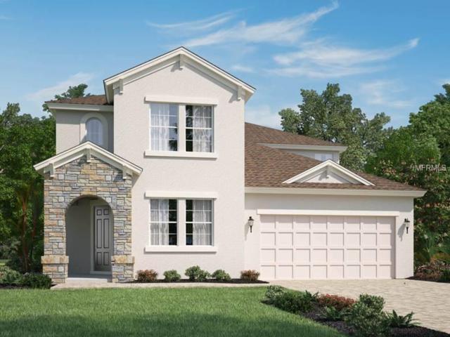 12583 Ryegrass Loop, Parrish, FL 34219 (MLS #O5709269) :: TeamWorks WorldWide