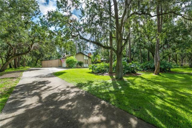 14149 Mastwood Way, Orlando, FL 32832 (MLS #O5709779) :: The Lockhart Team