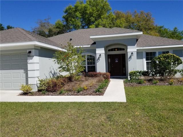 7728 Sloewood Drive, Leesburg, FL 34748 (MLS #O5710233) :: Team Bohannon Keller Williams, Tampa Properties