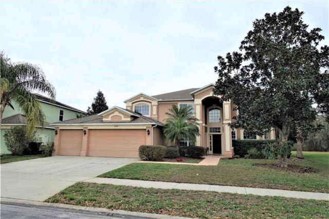 10099 Hart Branch Circle, Orlando, FL 32832 (MLS #O5710264) :: OneBlue Real Estate