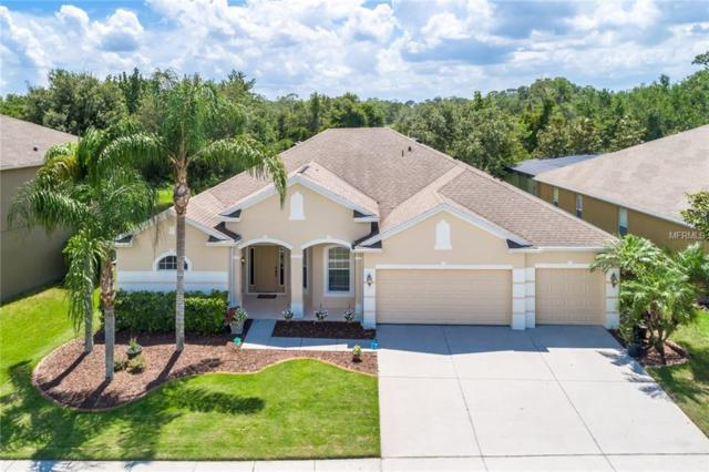 10348 Mallard Landings Way, Orlando, FL 32832 (MLS #O5710797) :: Godwin Realty Group