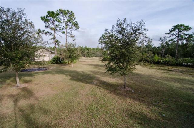4807 Brown Road, Christmas, FL 32709 (MLS #O5710825) :: The Duncan Duo Team
