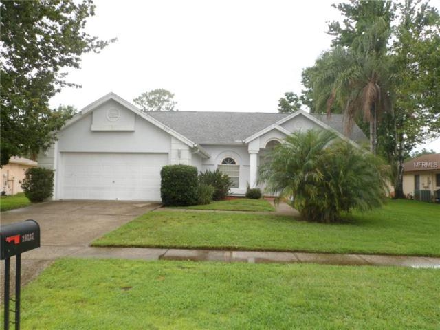 20337 Majestic Street, Orlando, FL 32833 (MLS #O5710994) :: Griffin Group