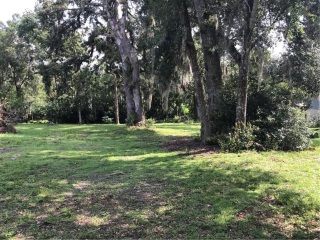 E 3RD Avenue, Mount Dora, FL 32757 (MLS #O5712104) :: Mark and Joni Coulter | Better Homes and Gardens