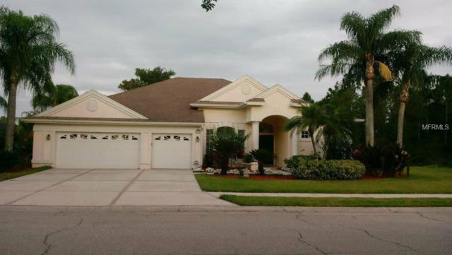 10002 Laurel Valley Avenue Circle, Bradenton, FL 34202 (MLS #O5713369) :: Revolution Real Estate