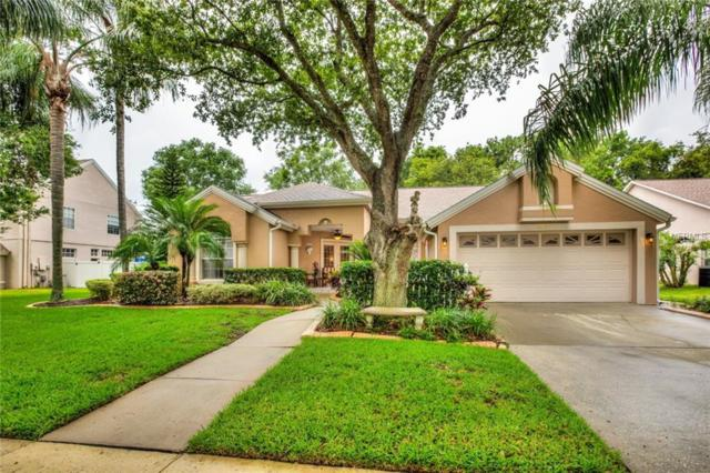 3527 Furlong Way, Gotha, FL 34734 (MLS #O5713412) :: G World Properties