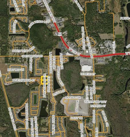 950 N Roma Way, Kissimmee, FL 34746 (MLS #O5713646) :: The Duncan Duo Team