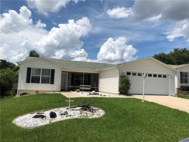 9521 Se 168Th Elderberry Place, The Villages, FL 32162 (MLS #O5714254) :: Realty Executives in The Villages