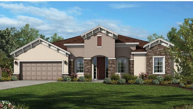 133 Gingerleaf Lane, Oviedo, FL 32765 (MLS #O5714957) :: Premium Properties Real Estate Services