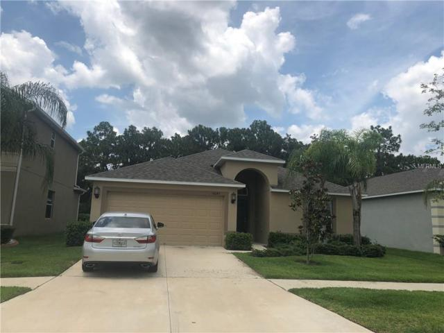 Address Not Published, Wimauma, FL 33598 (MLS #O5715439) :: Griffin Group