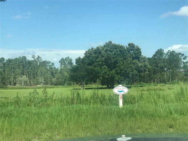 5040 Lakeshore Ranch Road, Groveland, FL 34736 (MLS #O5715488) :: The Duncan Duo Team