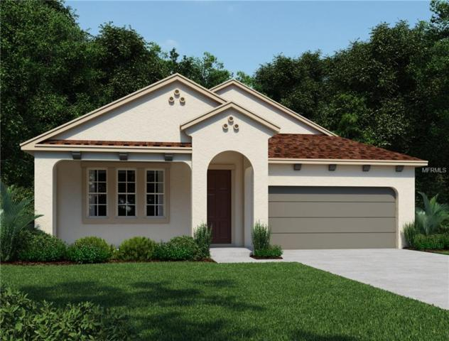 5174 Asher Court, Sarasota, FL 34232 (MLS #O5715535) :: FL 360 Realty