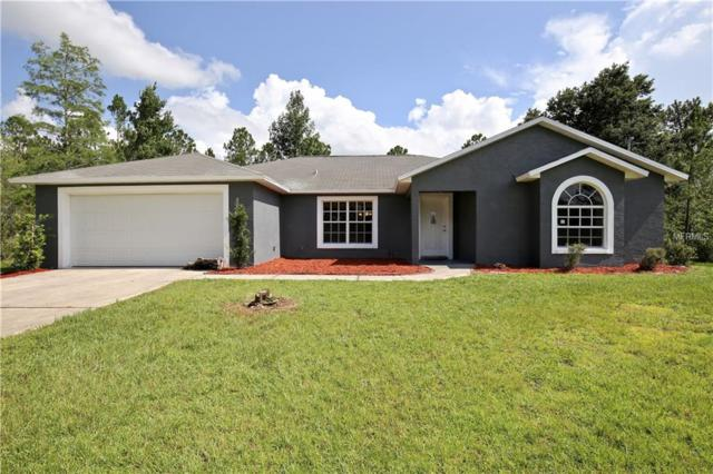 20398 Paddock Street, Orlando, FL 32833 (MLS #O5715630) :: Mark and Joni Coulter | Better Homes and Gardens