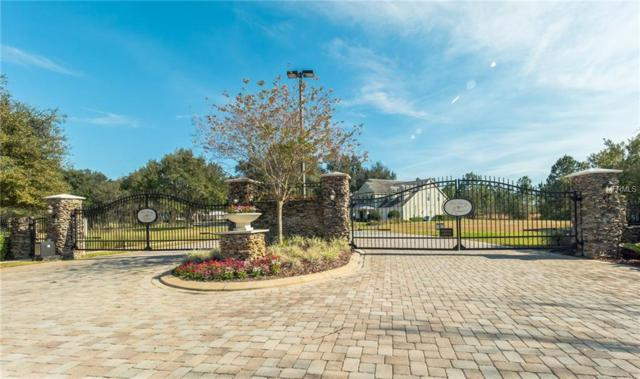428 Long And Winding Road, Groveland, FL 34737 (MLS #O5716005) :: The Lockhart Team