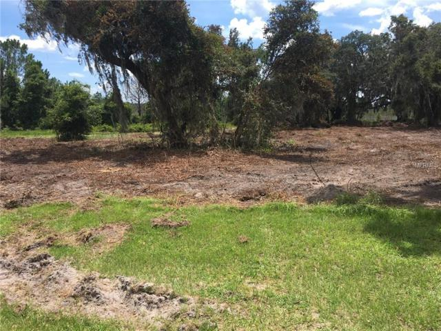 438 Long And Winding Road, Groveland, FL 34737 (MLS #O5716011) :: The Lockhart Team