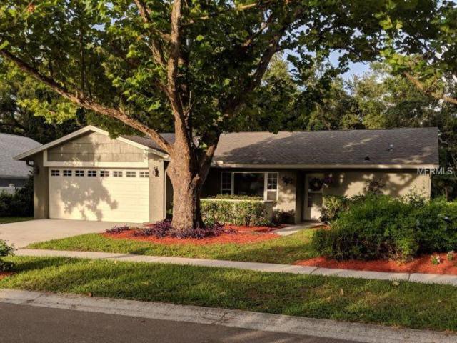 2 Harbor Cove Street, Safety Harbor, FL 34695 (MLS #O5716307) :: Chenault Group