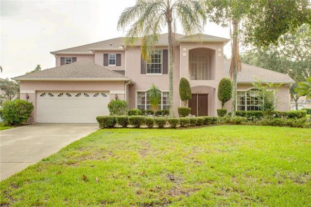 6725 Scimitar Avenue, Orlando, FL 32812 (MLS #O5716321) :: RE/MAX Realtec Group