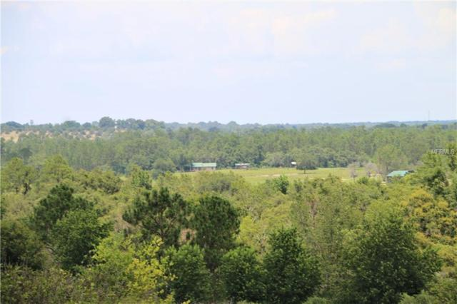 Valley View Drive, Howey in the Hills, FL 34737 (MLS #O5716371) :: The Lockhart Team
