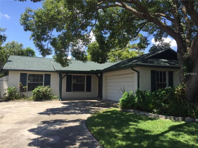3208 Dwarf Pine Avenue, Winter Park, FL 32792 (MLS #O5716373) :: McConnell and Associates