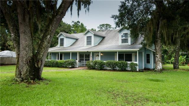 2570 Turnbull Bay Road, New Smyrna Beach, FL 32168 (MLS #O5717861) :: The Lockhart Team