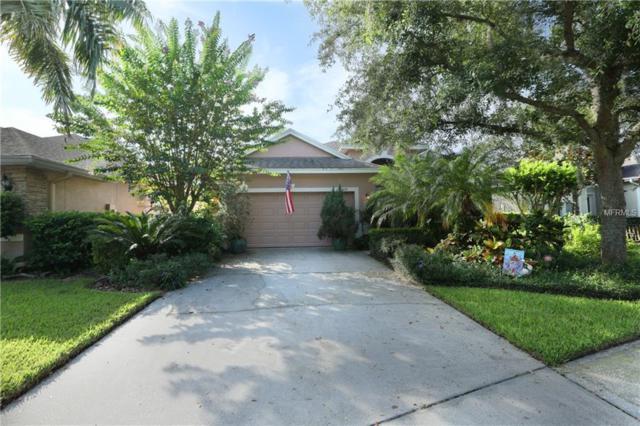 10037 Silk Grass Drive, Orlando, FL 32827 (MLS #O5718247) :: StoneBridge Real Estate Group