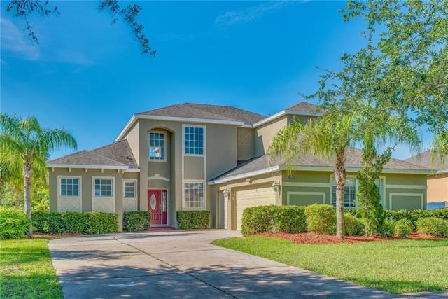 6224 Zane Drive, Mount Dora, FL 32757 (MLS #O5719143) :: GO Realty