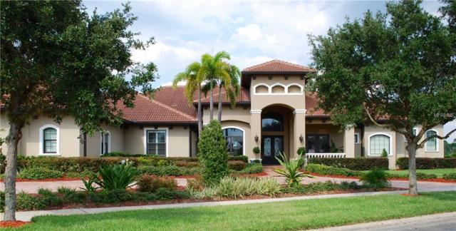 5533 Marleon Drive, Windermere, FL 34786 (MLS #O5719459) :: G World Properties