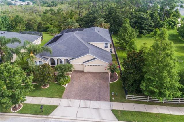 12606 Dallington Terrace, Winter Garden, FL 34787 (MLS #O5719490) :: Premium Properties Real Estate Services