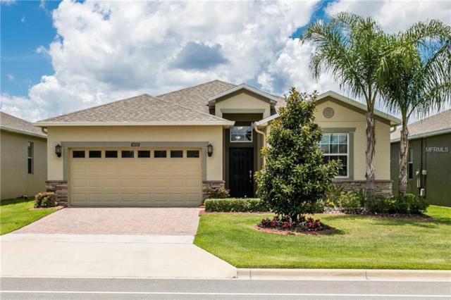 4028 Serena Lane, Clermont, FL 34711 (MLS #O5719617) :: Mark and Joni Coulter | Better Homes and Gardens