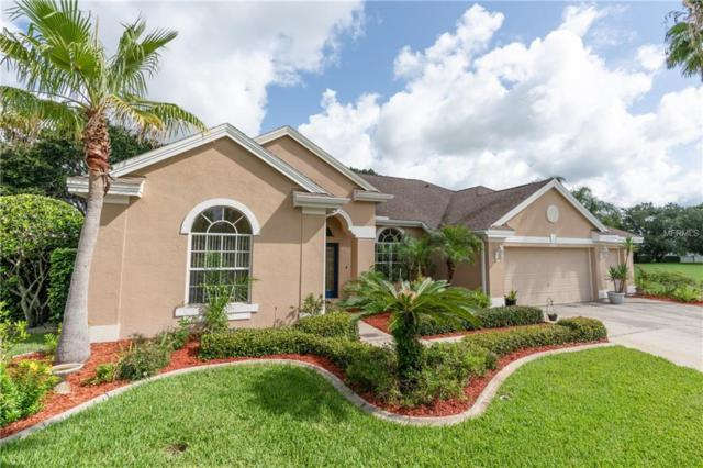8851 Bel Meadow Way, Trinity, FL 34655 (MLS #O5719744) :: Delgado Home Team at Keller Williams