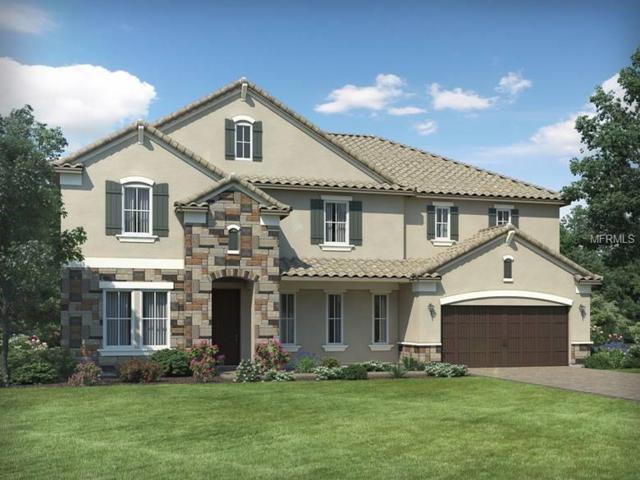 8169 Ludington Circle, Orlando, FL 32836 (MLS #O5719748) :: Premium Properties Real Estate Services