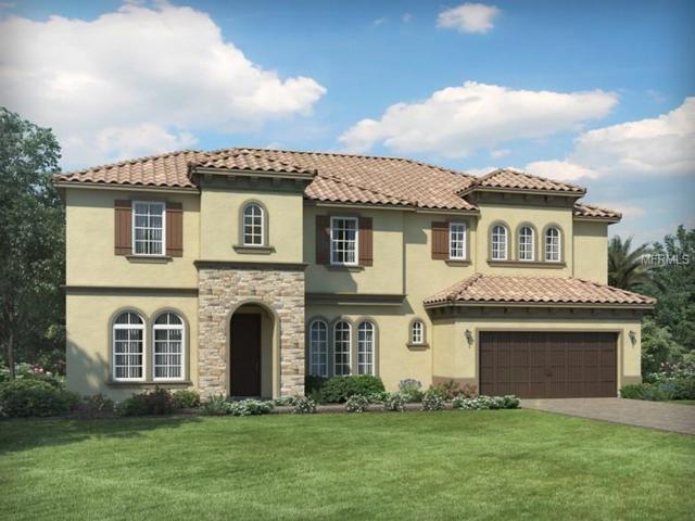 8241 Ludington Circle, Orlando, FL 32836 (MLS #O5719775) :: Premium Properties Real Estate Services