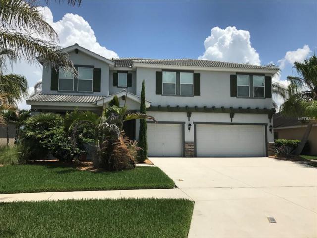 168 Star Shell Drive, Apollo Beach, FL 33572 (MLS #O5719844) :: Lovitch Realty Group, LLC