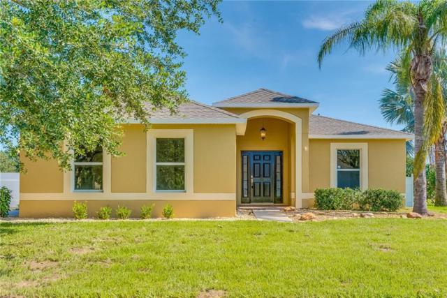 2097 Hayfield Way, Apopka, FL 32712 (MLS #O5719890) :: GO Realty