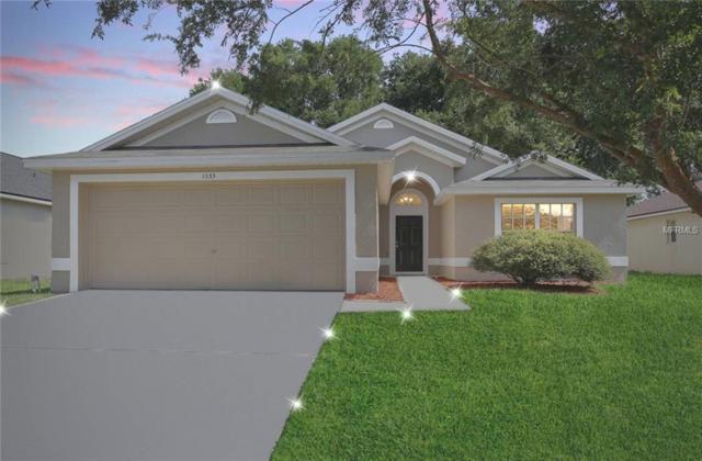 1033 Shale Trail Street, Apopka, FL 32703 (MLS #O5720481) :: GO Realty