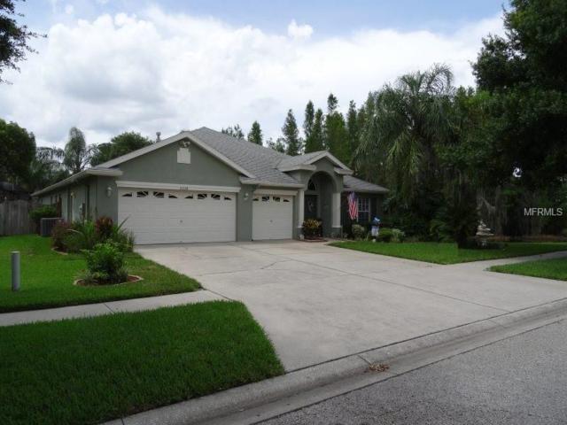 5334 Winhawk Way, Lutz, FL 33558 (MLS #O5720602) :: Griffin Group