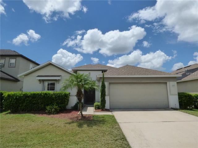 13244 Oulton Circle, Orlando, FL 32832 (MLS #O5720701) :: The Light Team