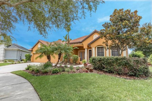 20115 NW Pond Spring Way SE, Tampa, FL 33647 (MLS #O5720805) :: Cartwright Realty