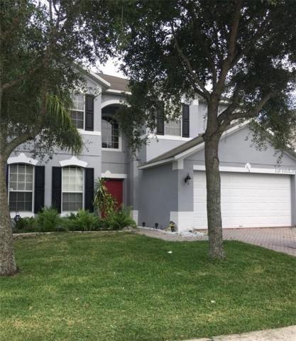 213 Doe Run Drive, Winter Garden, FL 34787 (MLS #O5720978) :: The Signature Homes of Campbell-Plummer & Merritt