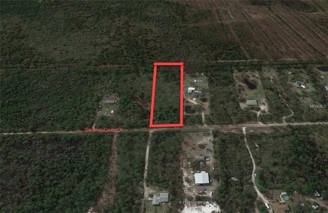 Swamp Deer Road, New Smyrna Beach, FL 32168 (MLS #O5721088) :: Mark and Joni Coulter | Better Homes and Gardens