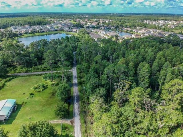 Clementine Lane, Wesley Chapel, FL 33543 (MLS #O5721145) :: Griffin Group